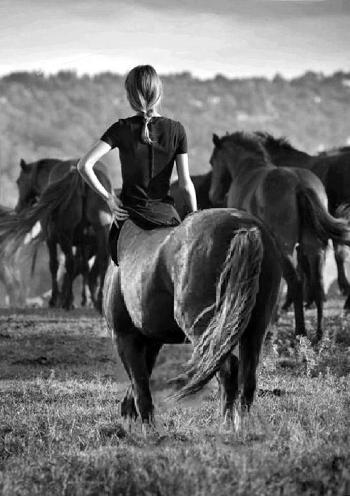 Minding the herd.