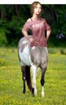Centaur Filly 3D