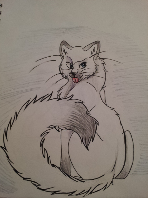 drawing of fluffy cat by alexthewolfy on deviantart