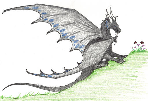 Young Temeraire