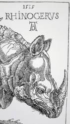 Rhino-1 by Ladydrawcom