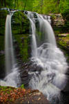 Fulmer Falls - Abyss