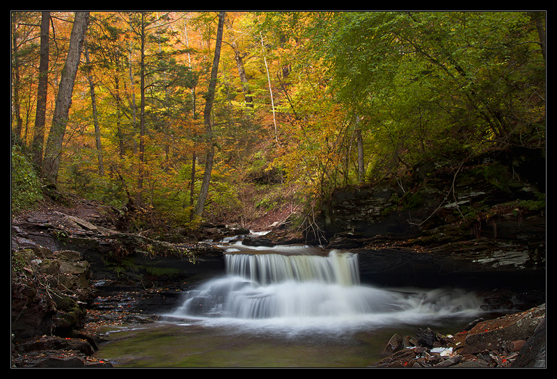 Happy Fall In Ricketts Glen by IngoSchobert