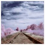 Last Train To Paradise by IngoSchobert