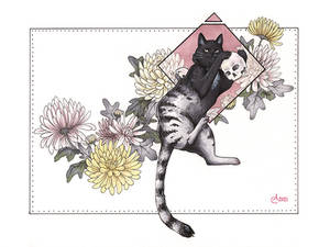 UT: Scottish Wildcat