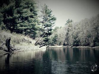 Vintage Riverbend by EsBest