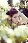 Bokeh Garden by romanledesma