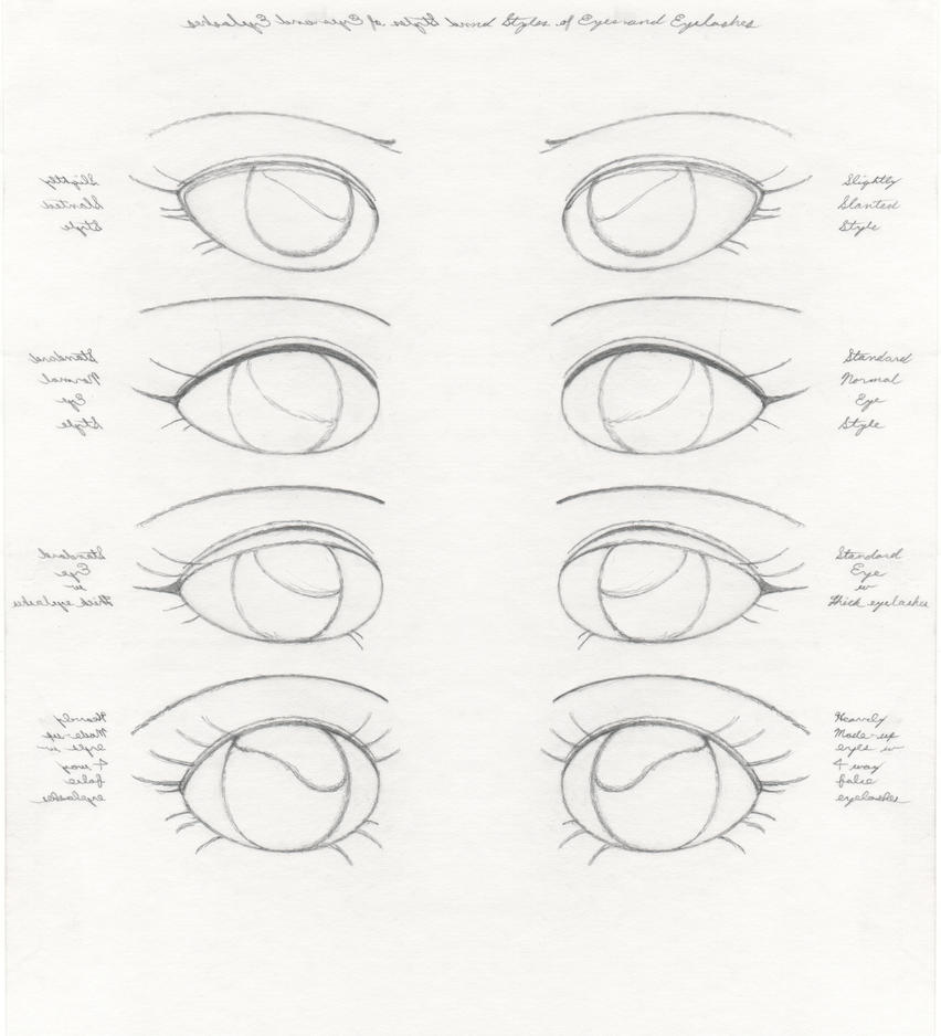Diff Style Diagram Of Eyes Data Wiring Diagrams