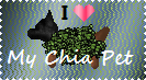 Chia Pet Lover Stamp by LadyIlona1984