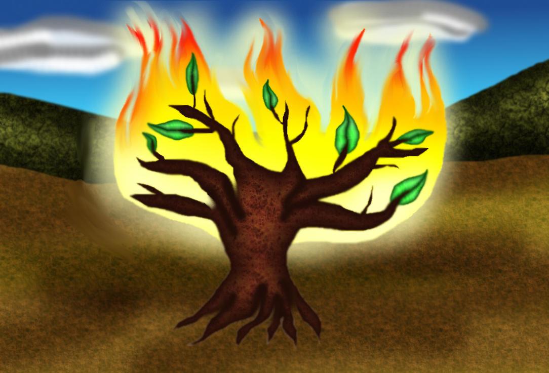 The Burning Bush By LadyIlona1984