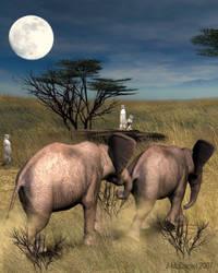 Baby Elephant Walk by jjean21