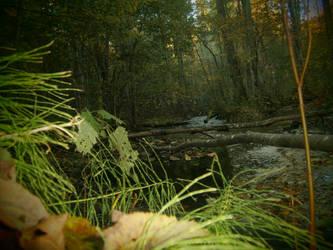 Riverforest by Vinterperle