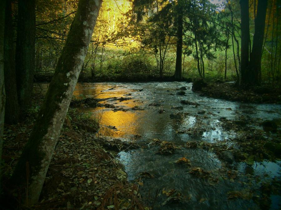 Colours of autumn by Vinterperle