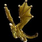 Golden Dragon4