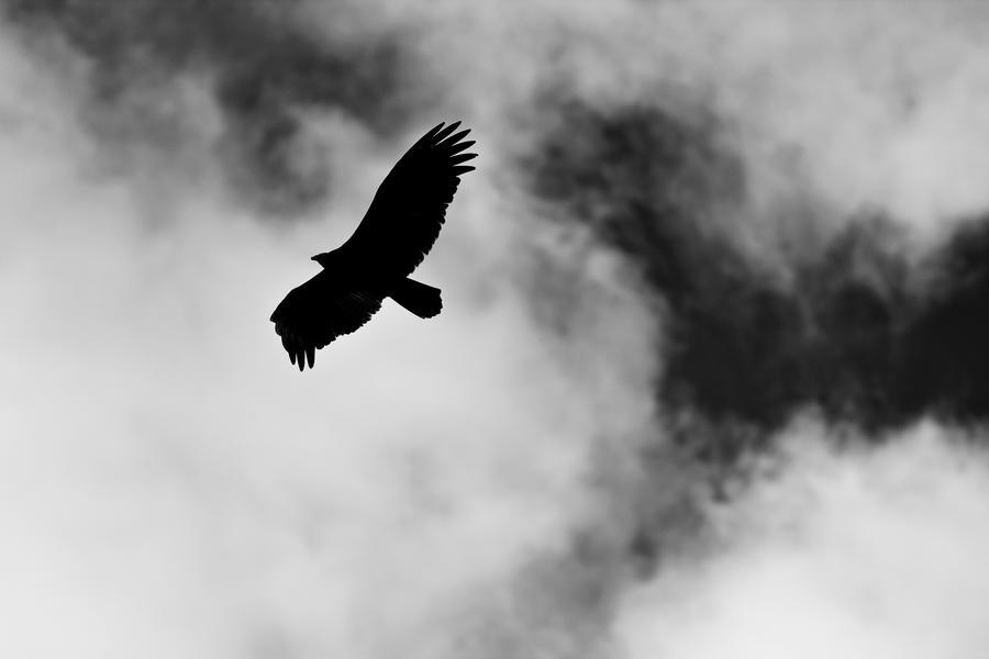 Breaking through the Sky by ZeeGraphix