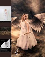 Angelus by Recendiz