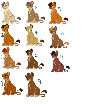 TLK BREED Adopts OPEN