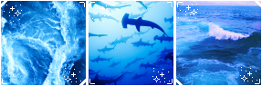 Discutie - Page 20 F2u_blue_sea_aesthetic_by_polishboyy_darwdtc-fullview.png?token=eyJ0eXAiOiJKV1QiLCJhbGciOiJIUzI1NiJ9.eyJzdWIiOiJ1cm46YXBwOiIsImlzcyI6InVybjphcHA6Iiwib2JqIjpbW3siaGVpZ2h0IjoiPD05NSIsInBhdGgiOiJcL2ZcLzVjNmE2ZWI3LWE2ZDQtNGJiMy05OGMxLTNmN2I0NDIyMDFiMFwvZGFyd2R0Yy1iMTRlMTFhZC1iYmM1LTQ5OWItOGQwOS1iNDgzMDEyOWY0ZjAucG5nIiwid2lkdGgiOiI8PTI4NyJ9XV0sImF1ZCI6WyJ1cm46c2VydmljZTppbWFnZS5vcGVyYXRpb25zIl19