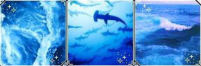f2u blue sea aesthetic