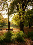 Autumn in Budapest-1