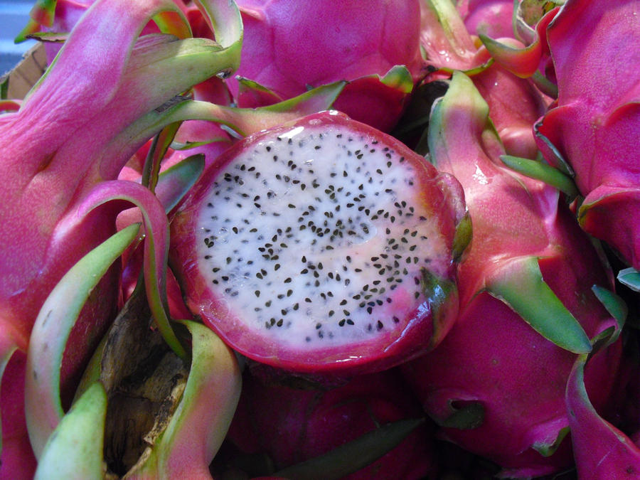 USA trip Dragon fruit by snofs