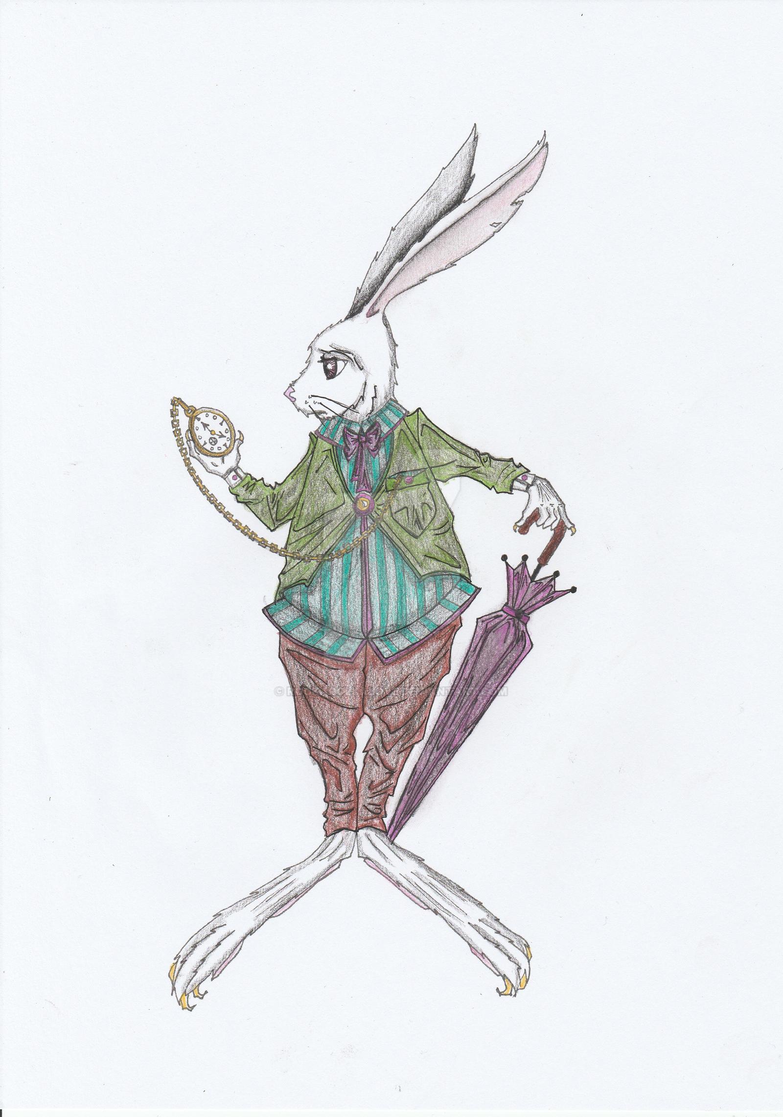 Alice In Wonderland The White Rabbit By Rockarollalove