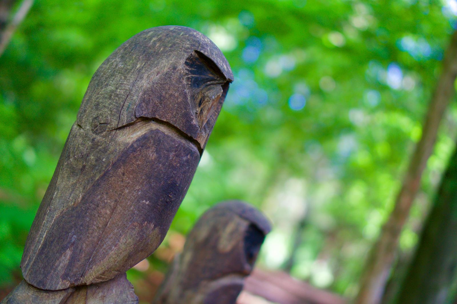 Owls by WeeGit