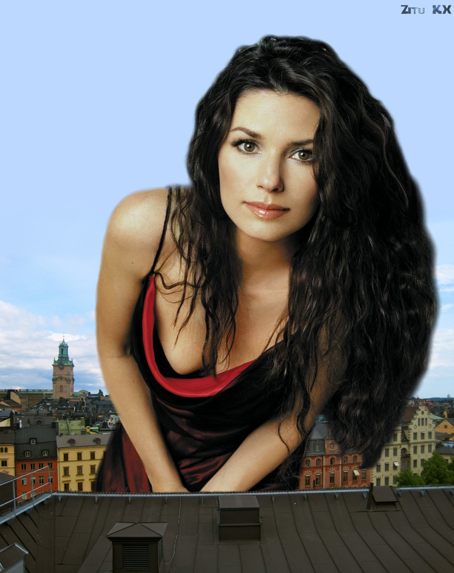 Building Sized Shania Twain by ZituKX