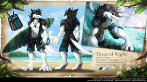 Commission Character sheet for DiscordNight by PenguinEXperience