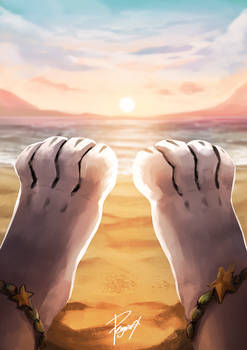 Paws, Beach and Sunset