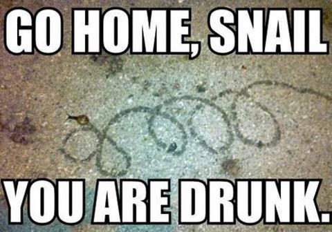Stupid Snail by Darkheartgoldsoul