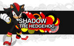 Sonic Generations Shadow Wall.
