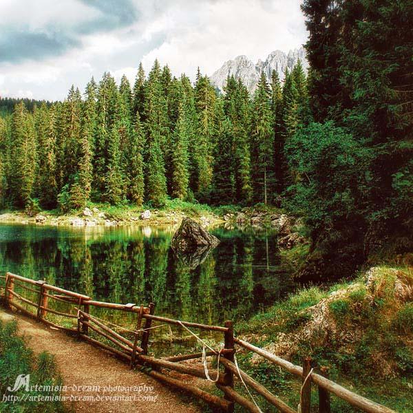 green heaven by Artemisia-dream