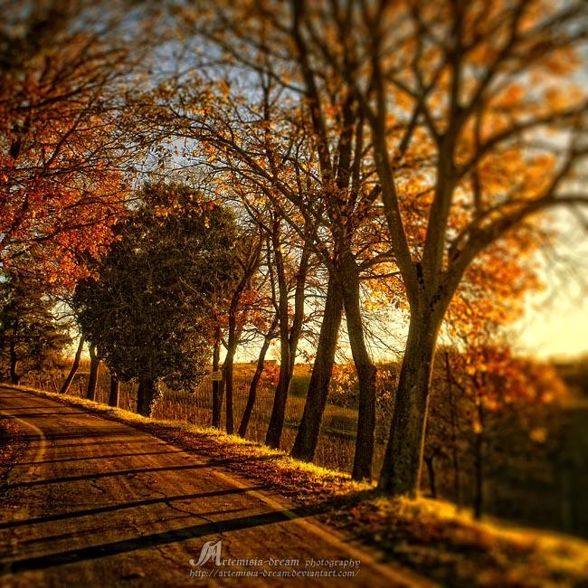 golden path by Artemisia-dream