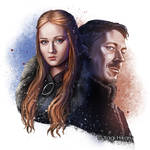 Lady of Winterfell and Littlefinger