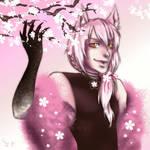 Sakura Tamas