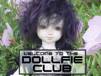 DevID by Dollfie-Club