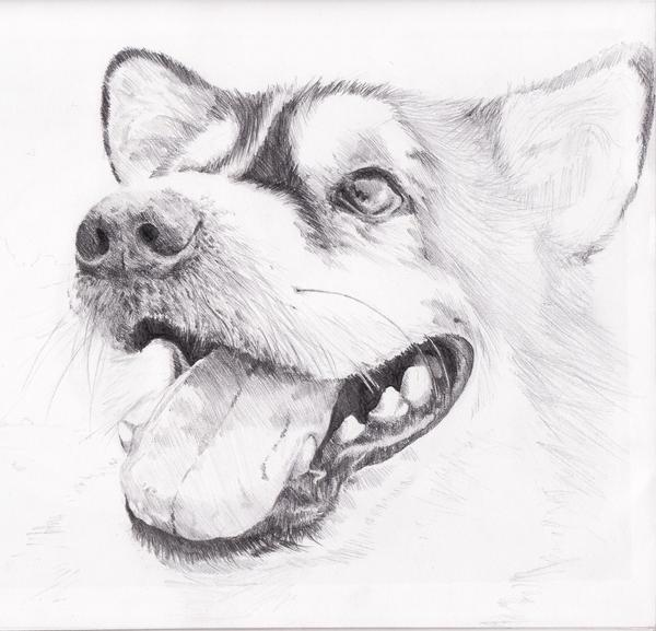 Pencil Drawings Fun Easy Pencil Drawings