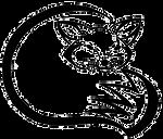 Fox Head and Tail Tribal