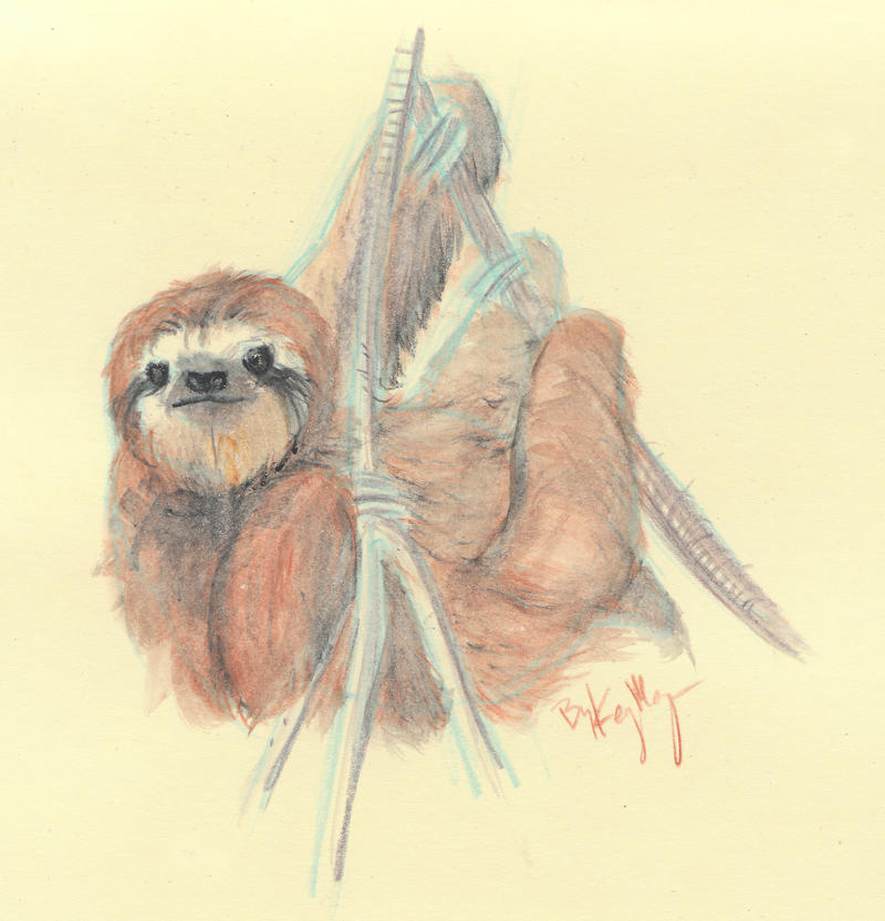 Sloth Water Color by Majykal-Melodi