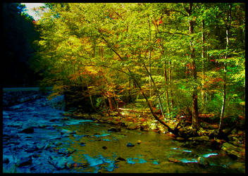 Riverbend by eclecticmuses