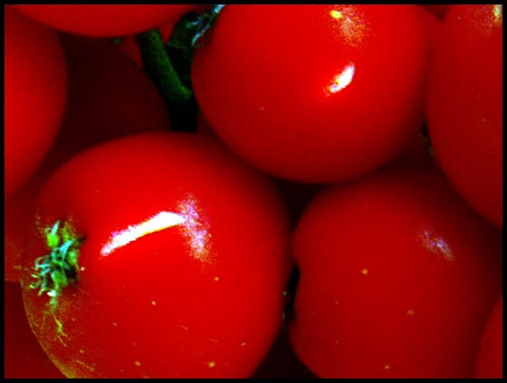 Crveno kao ljubav - Page 2 RED_by_stefee_818