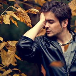 Fall.. by Khomenko