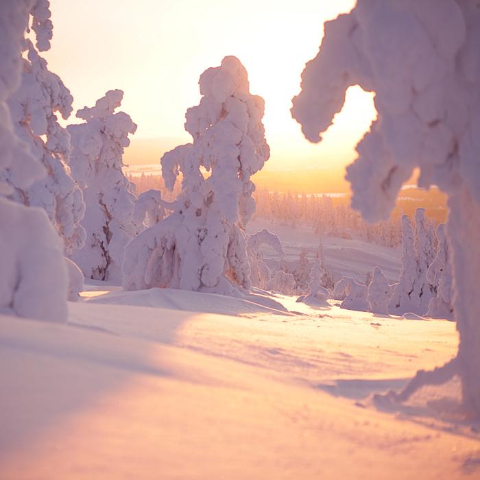 Calmness.. by Khomenko