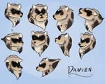 HP Sheet for Damien!