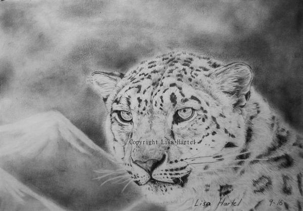 Snow leopard II by BeckyKidus