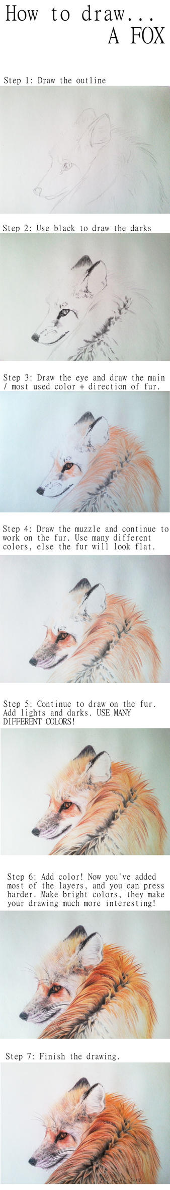 How to draw a fox portrait / WIPs for Looking back by BeckyKidus