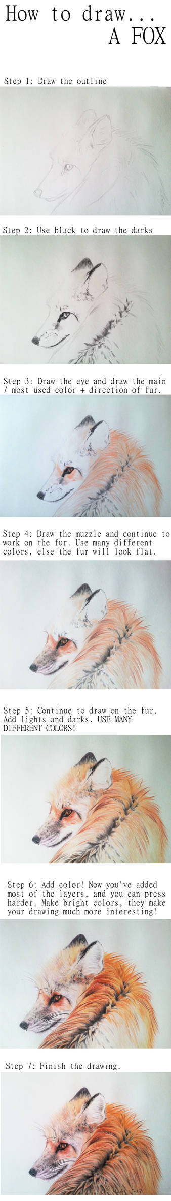 How to draw a fox portrait / WIPs for Looking back