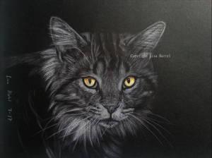 Demon - cat commission