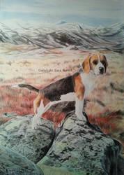 Leah the Beagle I by BeckyKidus